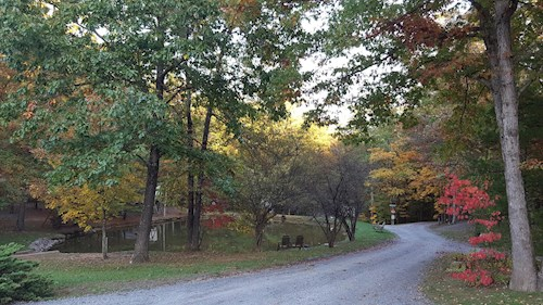 Little Orleans Campground & Park Area - Allegany County, The